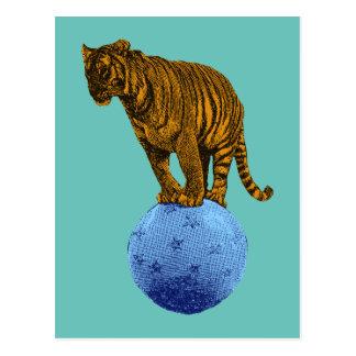 Tigre del circo del vintage postal