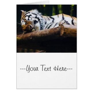 Tigre el dormir, gato grande, fotografía del tarjeta de felicitación