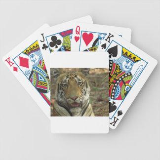 Tigre hermoso y sonriente baraja de cartas bicycle