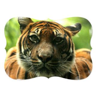 Tigre Invitación Personalizada