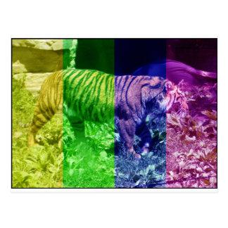 Tigre multicolor postal