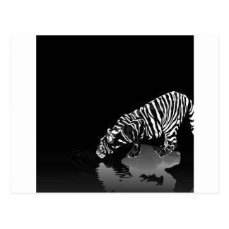 Tigre pelado animal abstracto postal