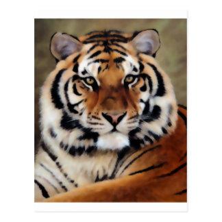 Tigre por Psyco Postal