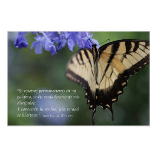 Tigre Swallowtail de Mariposa de la estafa del 8 3 Impresiones