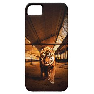 Tigre urbano iPhone 5 cárcasa