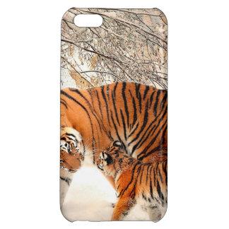 Tigre y cachorro - tigre