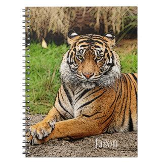 Tigre y escuela del nombre cuaderno