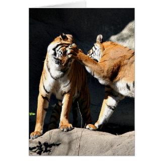 Tigres del sockem de Rockem Tarjeta De Felicitación
