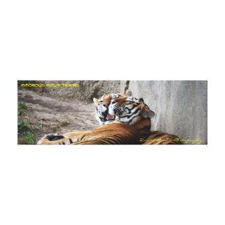 tigres envueltos 36x12x1.5 de Amur de la lona Lienzo