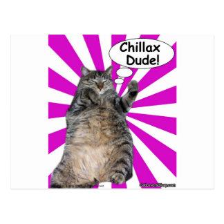 ¡Tipo de Chillax del gatito del hippy! Postal