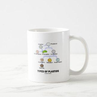 Tipos de Plastids Tazas
