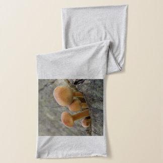Toadstools en una bufanda del tronco de árbol