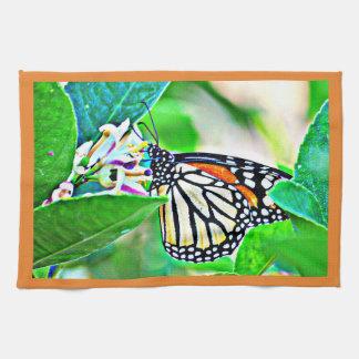Toalla de cocina de la mariposa de monarca