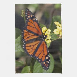 Toalla de cocina del monarca