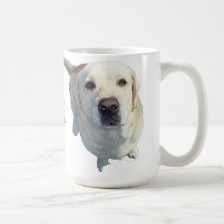 Toda la comida debe ir a la taza de café