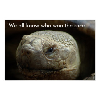 Todos sabemos quién ganó la carrera… poster