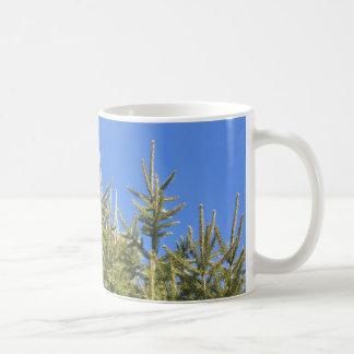Top del árbol taza de café