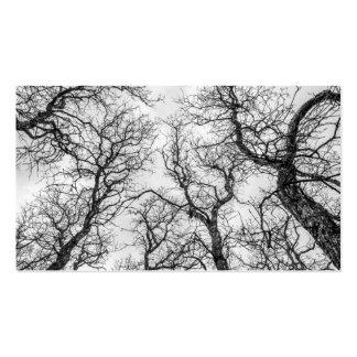 Tops de árboles torcidos, desnudos tarjetas de visita