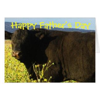 Toros felices del ganado de la granja del rancho tarjeta