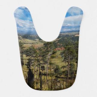 Torre Wyoming de los diablos del pino de Ponderosa Babero De Bebé