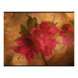 Torta de la flor/caja rosadas del postre folleto 21,6 x 28 cm