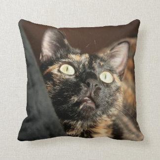 tortie cat pillow cojín decorativo