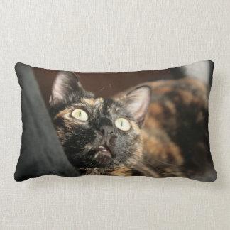 tortie cat pillow cojín lumbar