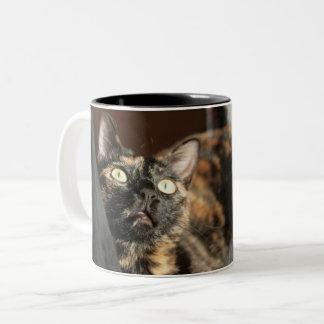 Tortitude mug - tortoiseshell cat taza de café de dos colores