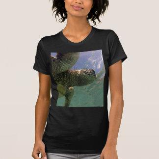 Tortuga de Hawaii de la bahía de Hanauma Camisas