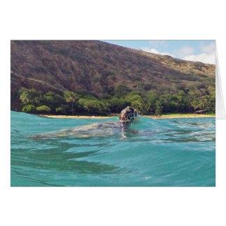 Tortuga de la hawaiana de Hawaii Tarjeta