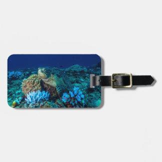 Tortuga de mar en la gran barrera de coral etiqueta para maletas