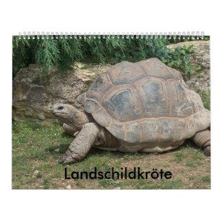 tortuga de país de calendario