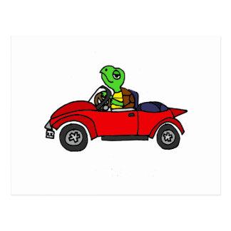 Tortuga divertida que conduce el coche convertible postal