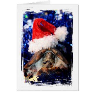 Tortuga en imagen del gorra de Santa del navidad Tarjeta