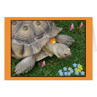 tortuga y flores tarjeta de felicitación