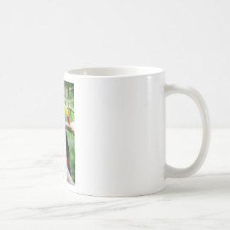 Toucan precioso taza de café