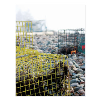 Trampas de la langosta en la playa rocosa postal