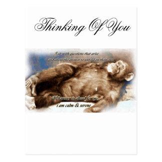 Tranquilo _ tarjetas postales