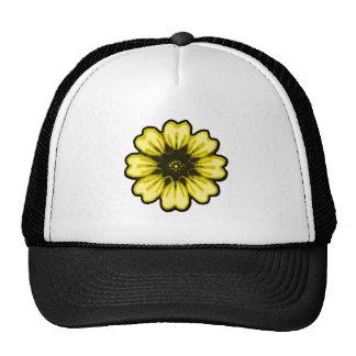 Transp amarillo negro de la margarita los regalos  gorras