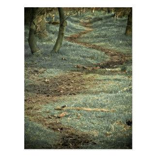 Trayectoria de bosque de la POSTAL