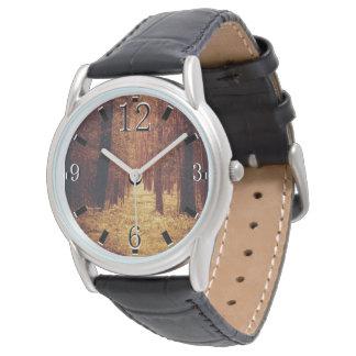 Trayectoria de bosque… reloj