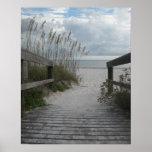 Trayectoria de la playa de la Florida Poster