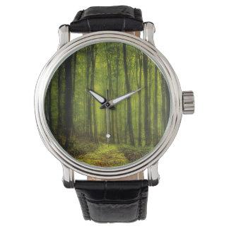 Trayectoria en maderas relojes