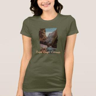 Tren del vintage en la camisa de las mujeres