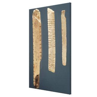 Tres adornaron los huesos lona envuelta para galerias