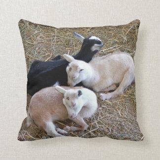 Tres cabras del bebé cojín decorativo