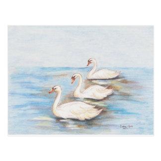 Tres cisnes postal
