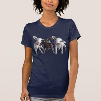 Tres ovejas frescas divertidas camiseta