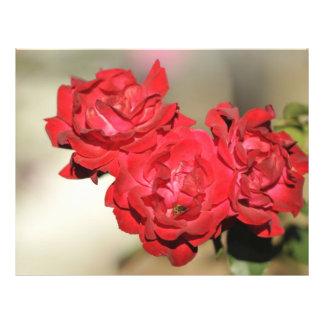 Tres rosas rojos y una abeja flyer personalizado