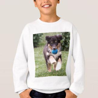 Tri perrito australiano coloreado del pastor sudadera